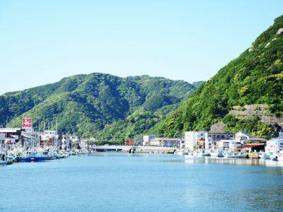 【下田写真部】渡邉ちひろ ペリー艦隊来航記念碑のある広場からの景色。山の緑と海の青、まちの色全部を入れて撮りました。